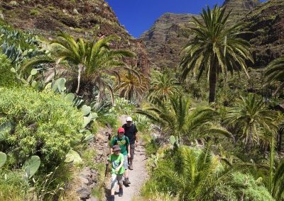 000344_spain_canaries_Walking-tour-on-The-s